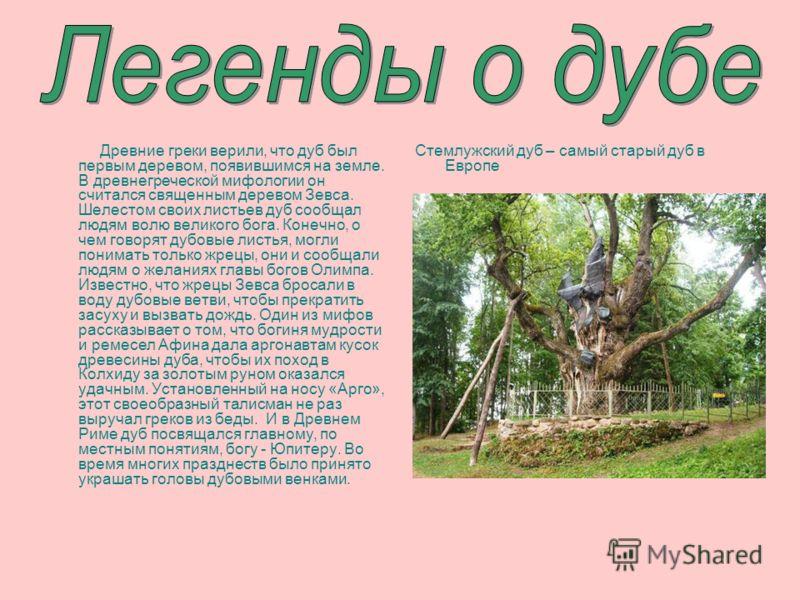 Древние греки верили, что дуб был первым деревом, появившимся на земле. В древнегреческой мифологии он считался священным деревом Зевса. Шелестом своих листьев дуб сообщал людям волю великого бога. Конечно, о чем говорят дубовые листья, могли понимат