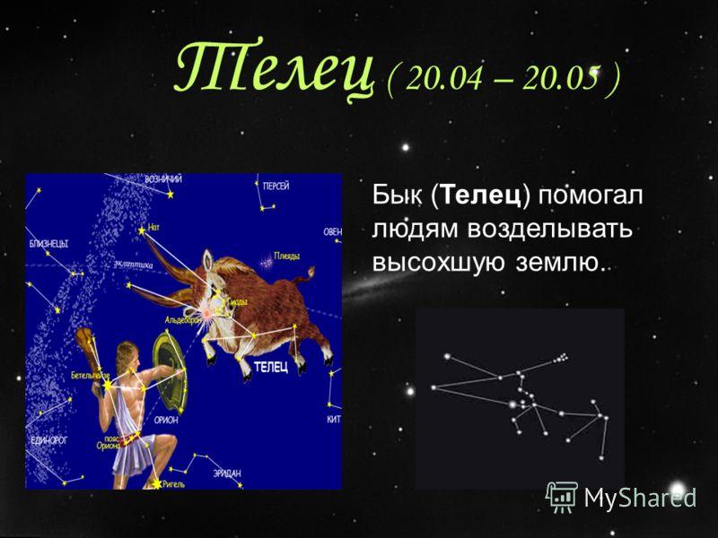 Телец ( 20.04 – 20.05 ) Бык (Телец) помогал людям возделывать высохшую землю.
