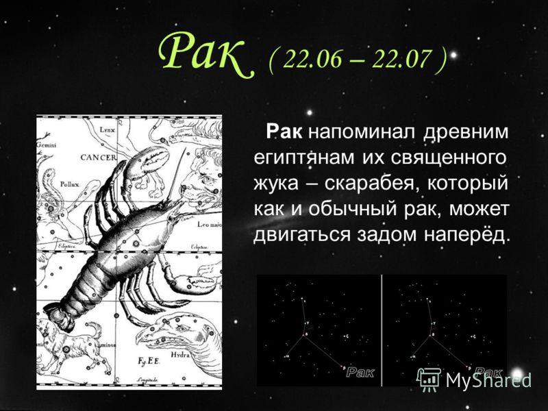 Рак ( 22.06 – 22.07 ) Рак напоминал древним египтянам их священного жука – скарабея, который как и обычный рак, может двигаться задом наперёд.