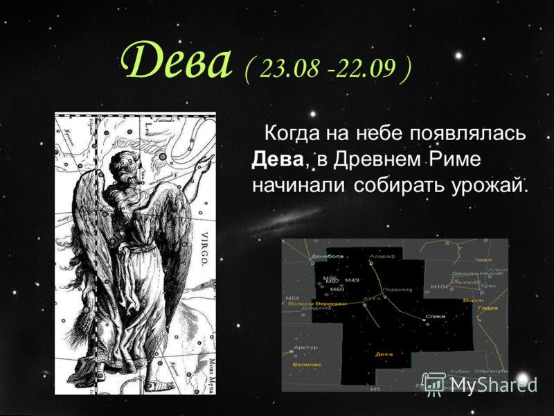 Дева ( 23.08 -22.09 ) Когда на небе появлялась Дева, в Древнем Риме начинали собирать урожай.
