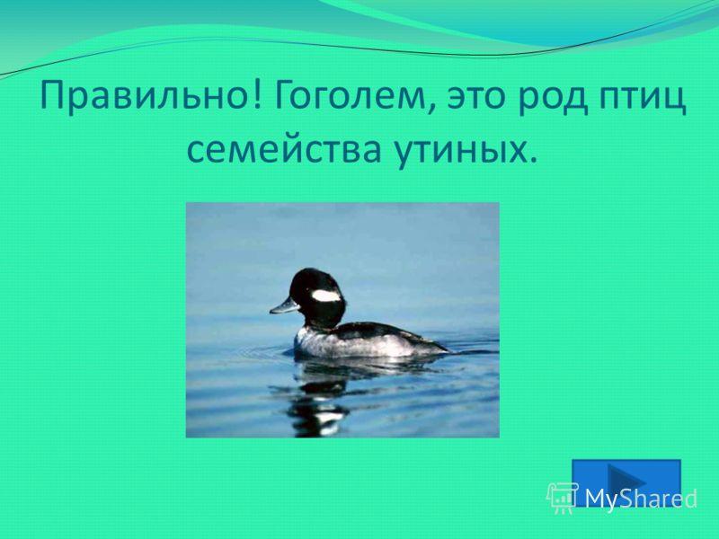 Про человека, который держится гордо, с независимым видом, говорят, что «он ходит…» А Б В Г Пушкиным Гоголем Чеховым Толстым