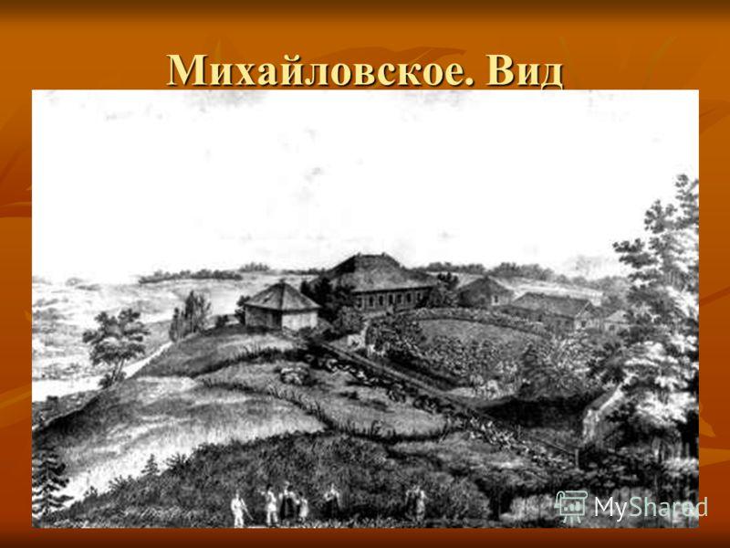 Михайловское. Вид