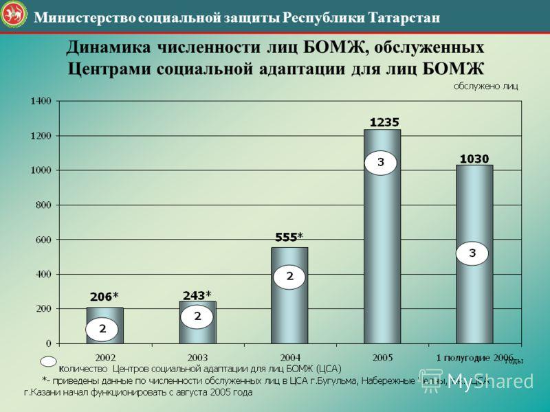 Динамика численности лиц БОМЖ, обслуженных Центрами социальной адаптации для лиц БОМЖ Министерство социальной защиты Республики Татарстан