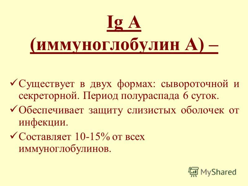 Ig A (иммуноглобулин А) – Существует в двух формах: сывороточной и секреторной. Период полураспада 6 суток. Обеспечивает защиту слизистых оболочек от инфекции. Составляет 10-15% от всех иммуноглобулинов.