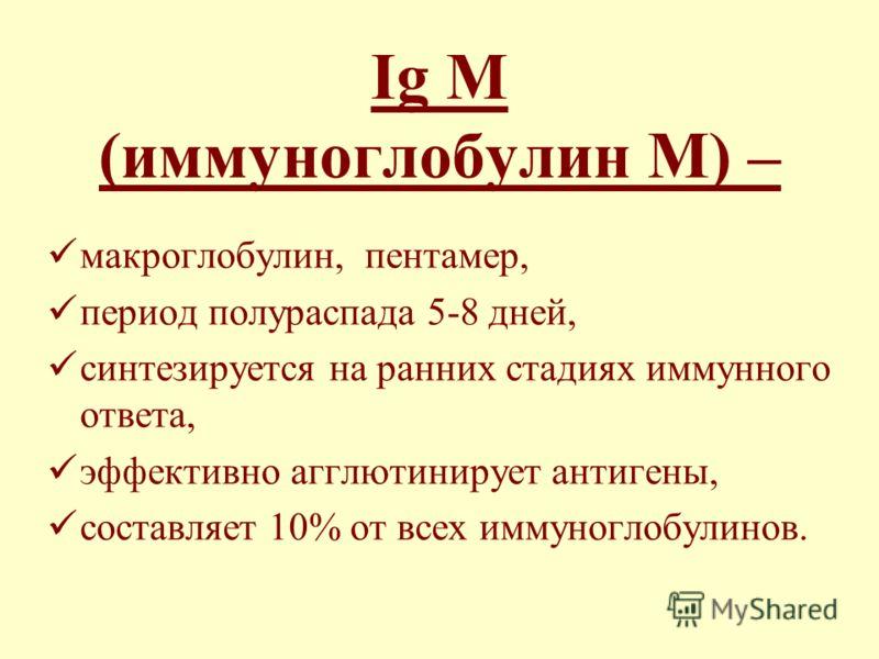 Ig М (иммуноглобулин М) – макроглобулин, пентамер, период полураспада 5-8 дней, синтезируется на ранних стадиях иммунного ответа, эффективно агглютинирует антигены, составляет 10% от всех иммуноглобулинов.
