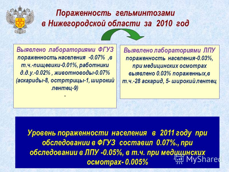 Пораженность гельминтозами в Нижегородской области за 2010 год Выявлено лабораториями ФГУЗ пораженность населения -0.07%,в т.ч.-пищевики-0.01%, работники д.д.у.-0.02%, животноводы-0.07% (аскариды-8, остртрицы-1, широкий лентец-9) - Выявлено лаборатор