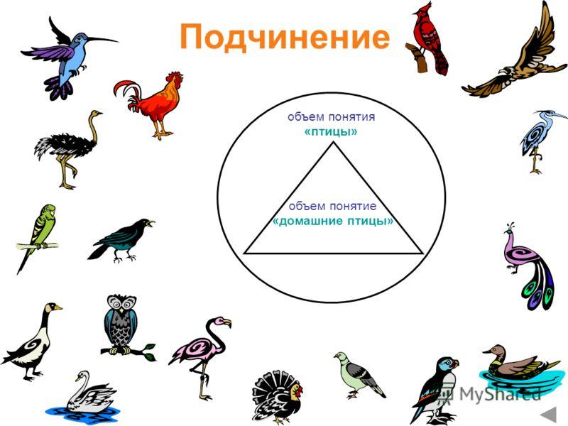Подчинение объем понятия «птицы» объем понятие «домашние птицы»