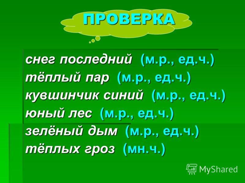 ПРОВЕРКА снег последний (м.р., ед.ч.) тёплый пар (м.р., ед.ч.) кувшинчик синий (м.р., ед.ч.) юный лес (м.р., ед.ч.) зелёный дым (м.р., ед.ч.) тёплых гроз (мн.ч.)