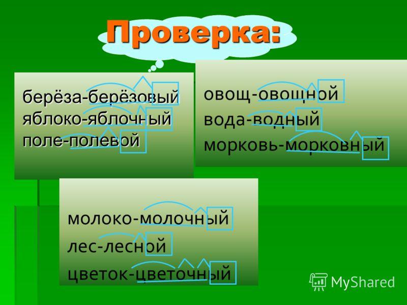 Проверка:берёза-берёзовыйяблоко-яблочныйполе-полевой овощ-овощной вода-водный морковь-морковный молоко-молочный лес-лесной цветок-цветочный