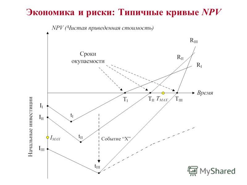 Экономика и риски: Типичные кривые NPV