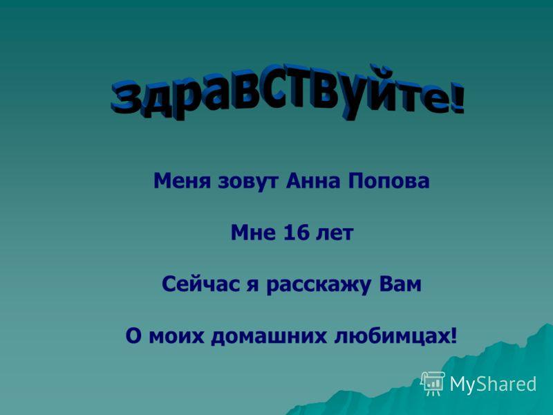 Меня зовут Анна Попова Мне 16 лет Сейчас я расскажу Вам О моих домашних любимцах!