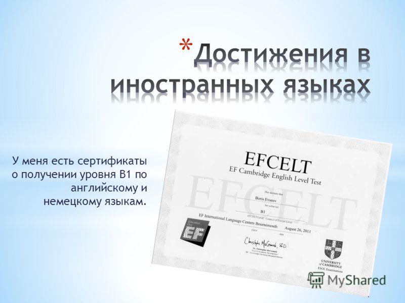 У меня есть сертификаты о получении уровня B1 по английскому и немецкому языкам.