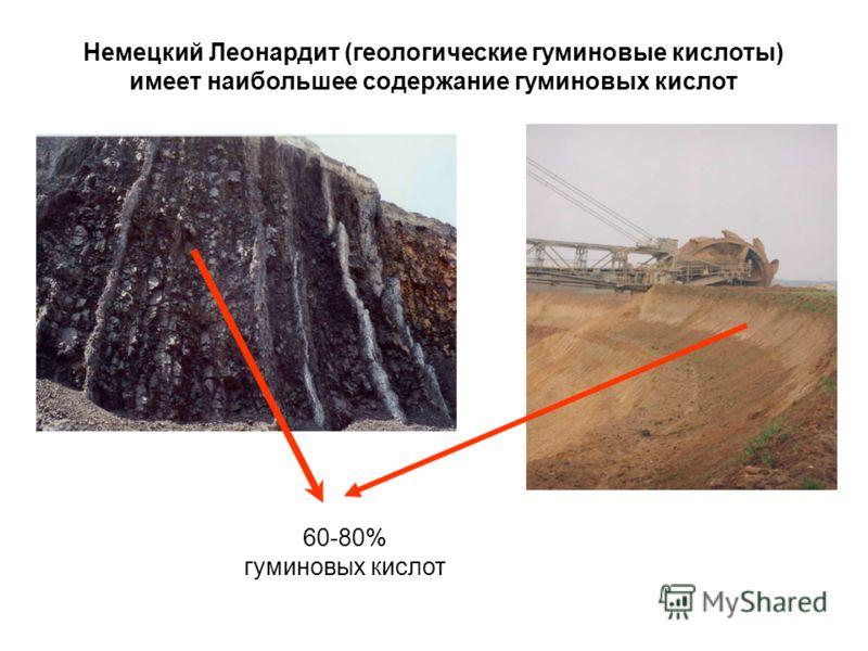 Немецкий Леонардит (геологические гуминовые кислоты) имеет наибольшее содержание гуминовых кислот 60-80% гуминовых кислот