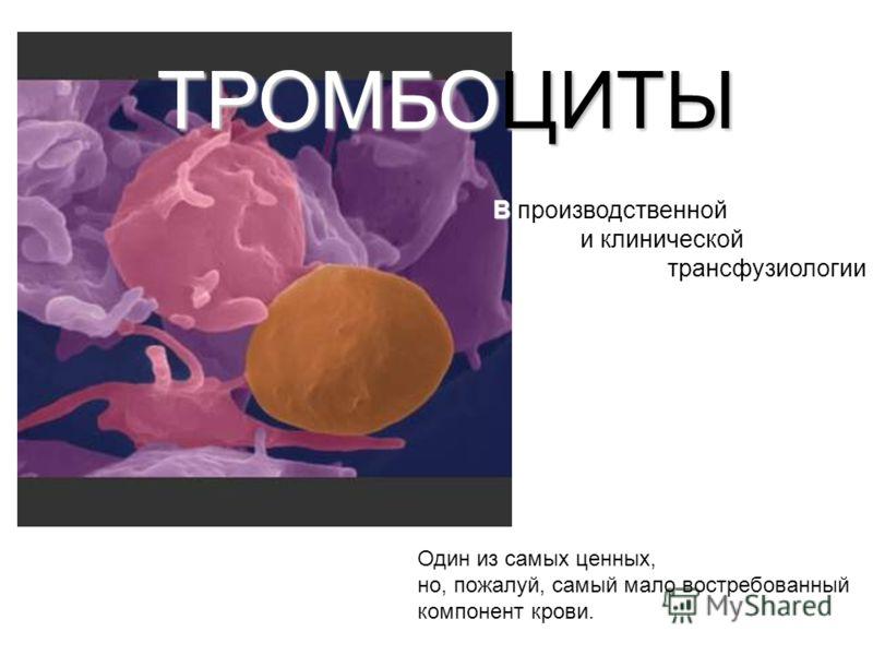 ТРОМБОЦИТЫ Один из самых ценных, но, пожалуй, самый мало востребованный компонент крови. В В производственной и клинической трансфузиологии