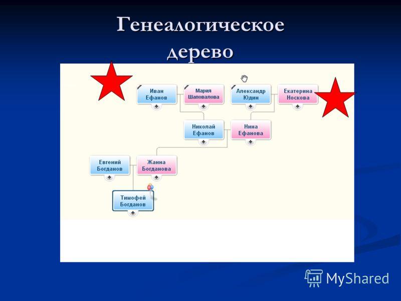 богданов тимофей васильевич ставрополь биография