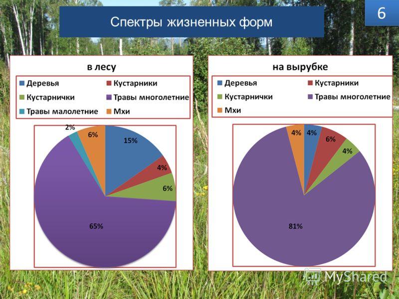 Спектры жизненных форм 5% 6 6