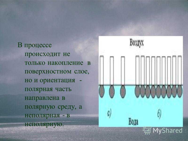 В процессе происходит не только накопление в поверхностном слое, но и ориентация - полярная часть направлена в полярную среду, а неполярная - в неполярную.