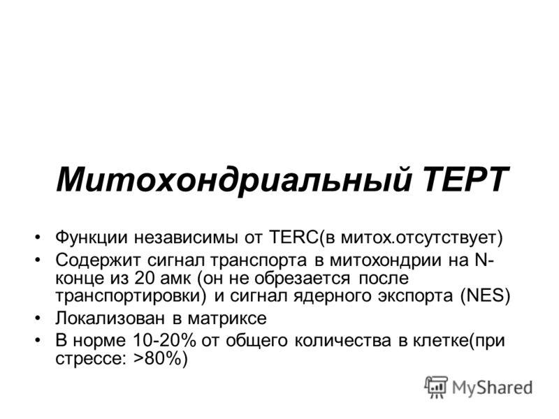 Митохондриальный ТЕРТ Функции независимы от TERC(в митох.отсутствует) Содержит сигнал транспорта в митохондрии на N- конце из 20 амк (он не обрезается после транспортировки) и сигнал ядерного экспорта (NES) Локализован в матриксе В норме 10-20% от об