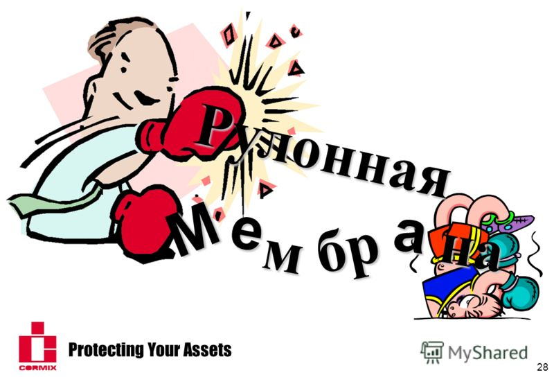 Protecting Your Assets 28 наРулоннаяM e м бр a