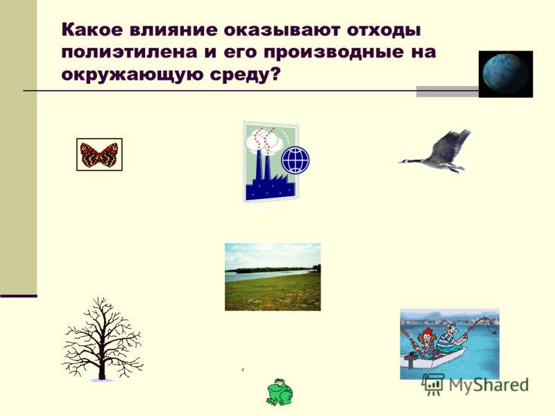 Какое влияние оказывают отходы полиэтилена и его производные на окружающую среду?