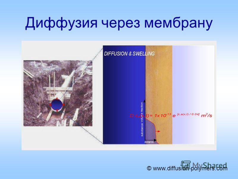 Диффузия через мембрану © www.diffusion-polymers.com