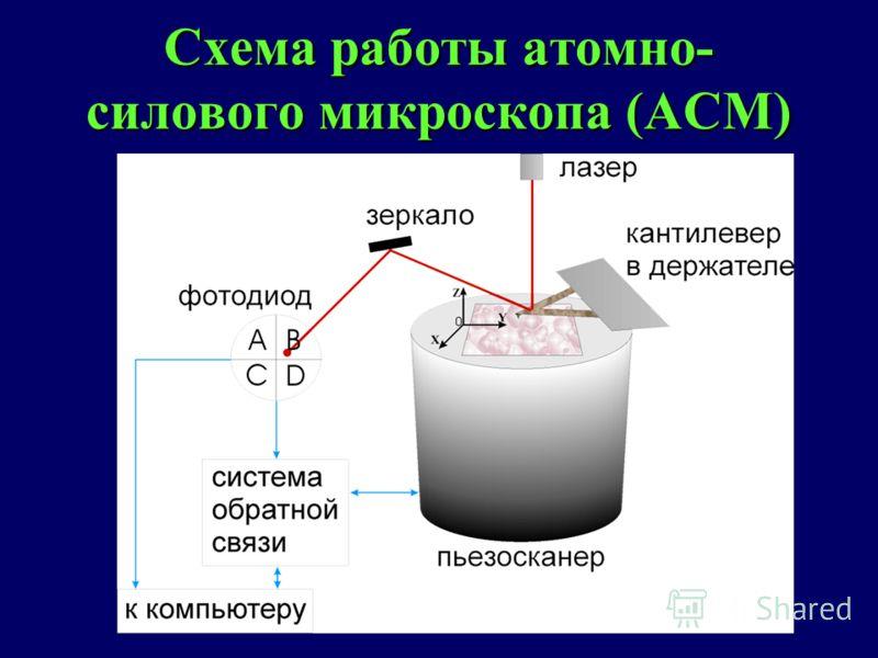 Схема работы атомно- силового микроскопа (АСМ)