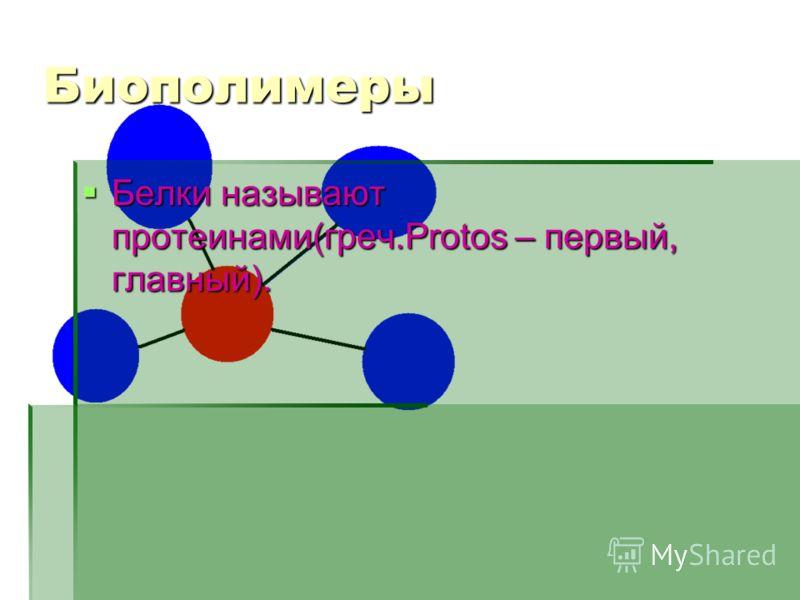 Биополимеры Белки называют протеинами(греч.Protos – первый, главный). Белки называют протеинами(греч.Protos – первый, главный).