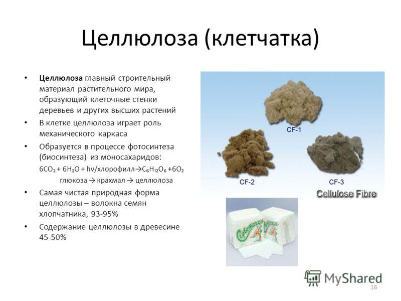 Целлюлоза (клетчатка) Целлюлоза главный строительный материал растительного мира, образующий клеточные стенки деревьев и других высших растений В клетке целлюлоза играет роль механического каркаса Образуется в процессе фотосинтеза (биосинтеза) из мон