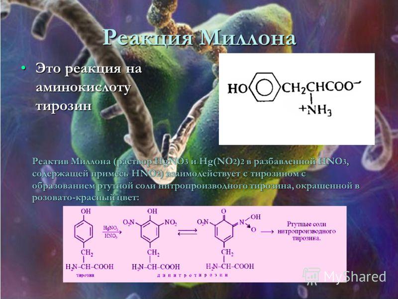 Реакция Миллона Это реакция на аминокислоту тирозинЭто реакция на аминокислоту тирозин