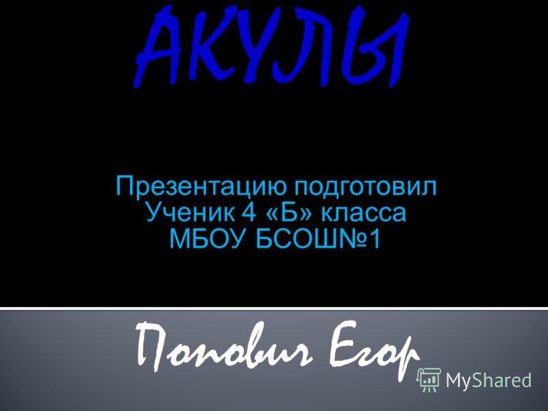 АКУЛЫ Презентацию подготовил Ученик 4 «Б» класса МБОУ БСОШ1 Попович Егор
