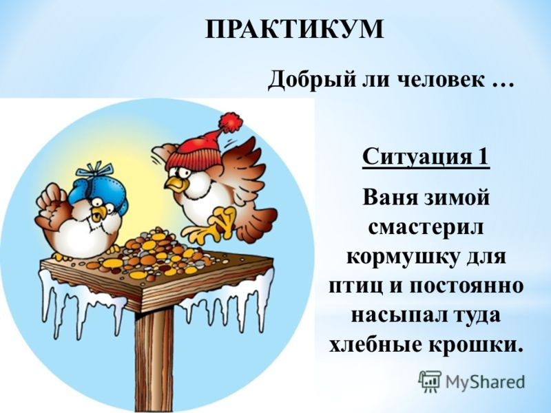 ПРАКТИКУМ Добрый ли человек … Ситуация 1 Ваня зимой смастерил кормушку для птиц и постоянно насыпал туда хлебные крошки.
