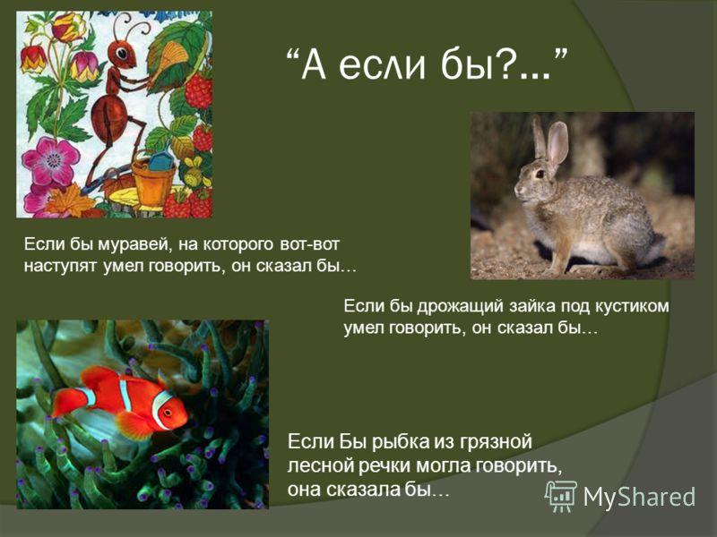А если бы?... Если Бы рыбка из грязной лесной речки могла говорить, она сказала бы… Если бы дрожащий зайка под кустиком умел говорить, он сказал бы… Если бы муравей, на которого вот-вот наступят умел говорить, он сказал бы…