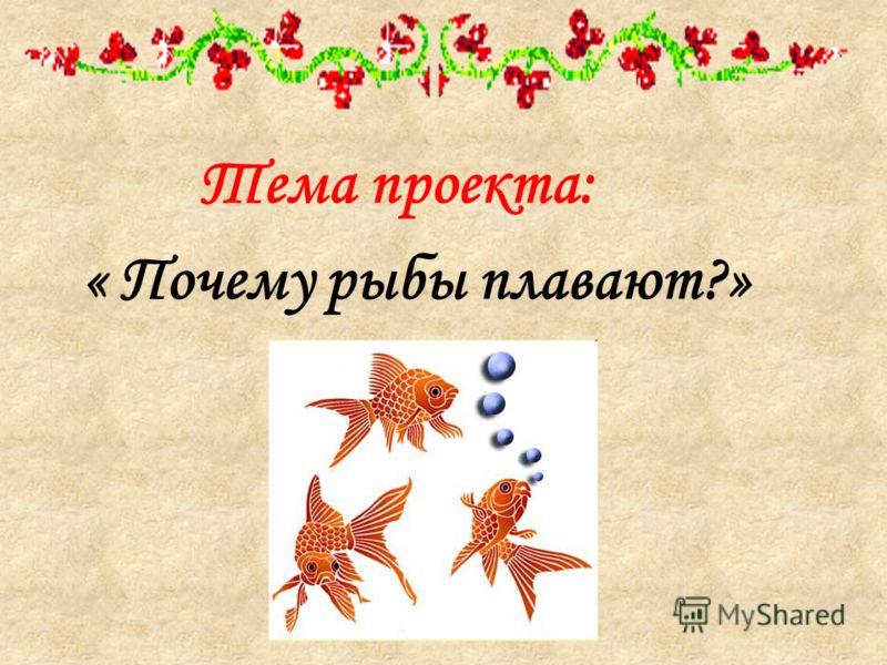 Тема проекта: « Почему рыбы плавают?»