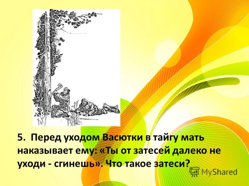 5. Перед уходом Васютки в тайгу мать наказывает ему: «Ты от затесей далеко не уходи - сгинешь». Что такое затеси?