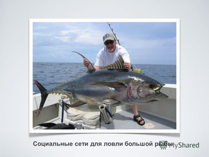 Социальные сети для ловли большой рыбы