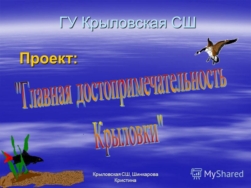 ГУ Крыловская СШ Проект: Крыловская СШ, Шинкарова Кристина
