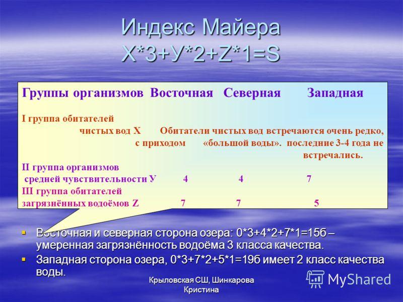 Индекс Майера Х*3+У*2+Z*1=S Восточная и северная сторона озера: 0*3+4*2+7*1=15б – умеренная загрязнённость водоёма 3 класса качества. Восточная и северная сторона озера: 0*3+4*2+7*1=15б – умеренная загрязнённость водоёма 3 класса качества. Западная с