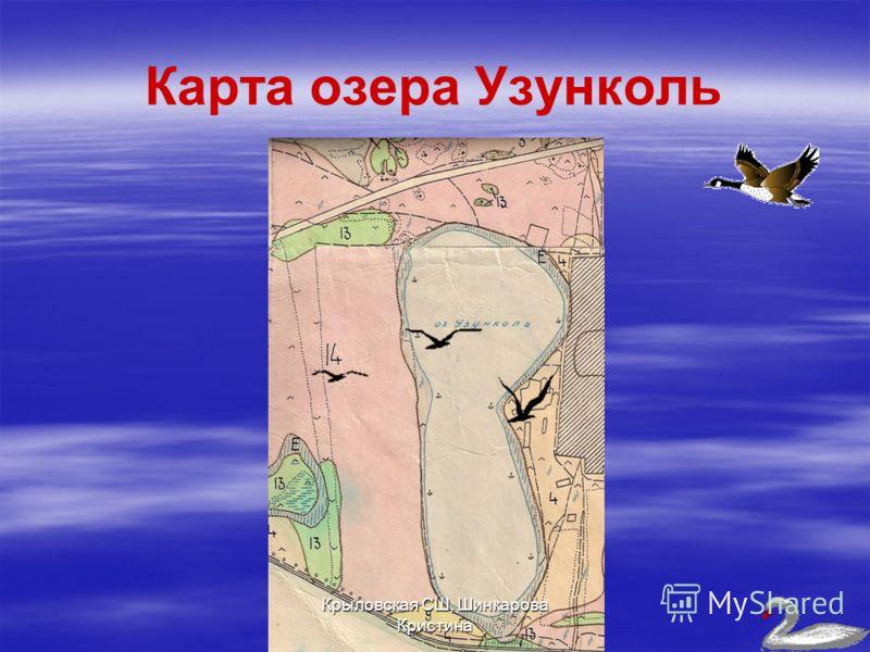 Карта озера Узунколь Крыловская СШ, Шинкарова Кристина