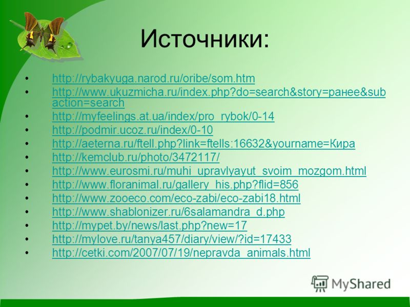 Источники: http://rybakyuga.narod.ru/oribe/som.htm http://www.ukuzmicha.ru/index.php?do=search&story=ранее&sub action=searchhttp://www.ukuzmicha.ru/index.php?do=search&story=ранее&sub action=search http://myfeelings.at.ua/index/pro_rybok/0-14 http://
