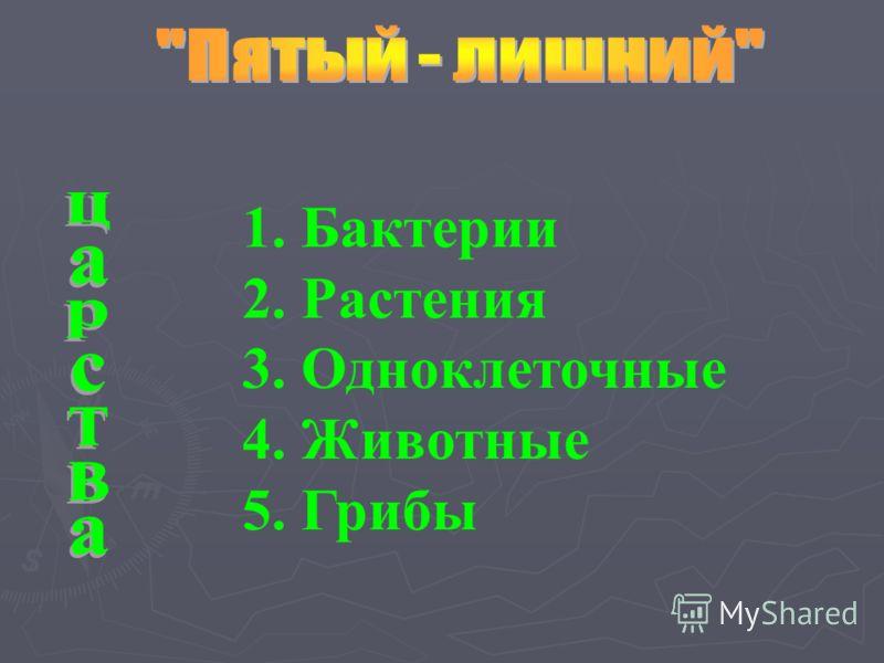 1. Бактерии 2. Растения 3. Одноклеточные 4. Животные 5. Грибы