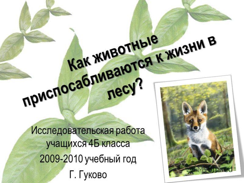 Как животные приспосабливаются к жизни в лесу? Исследовательская работа учащихся 4Б класса 2009-2010 учебный год Г. Гуково