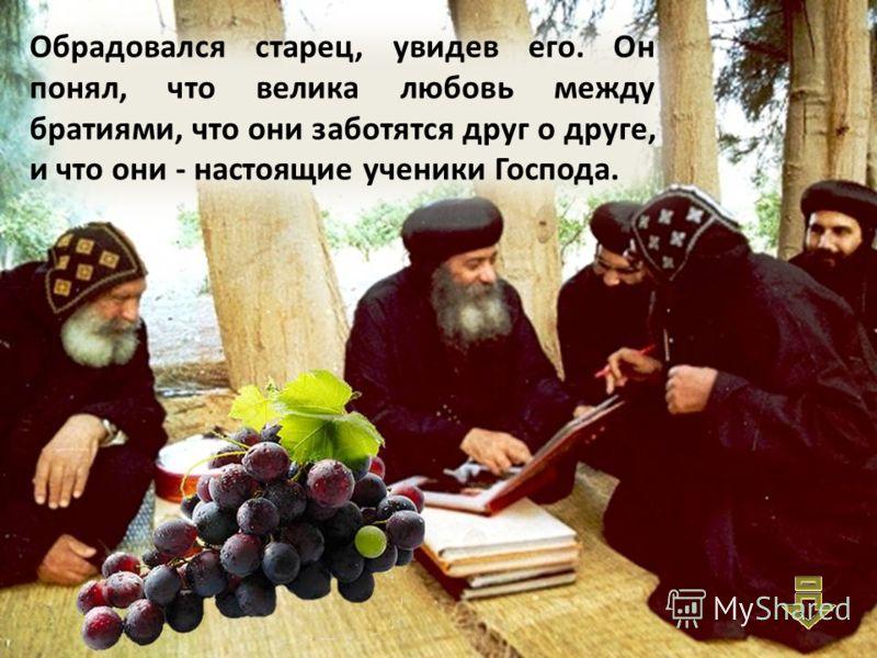 Келья Антония Великого В конце концов виноград, попутешествовав, вернулся к святому Макарию.