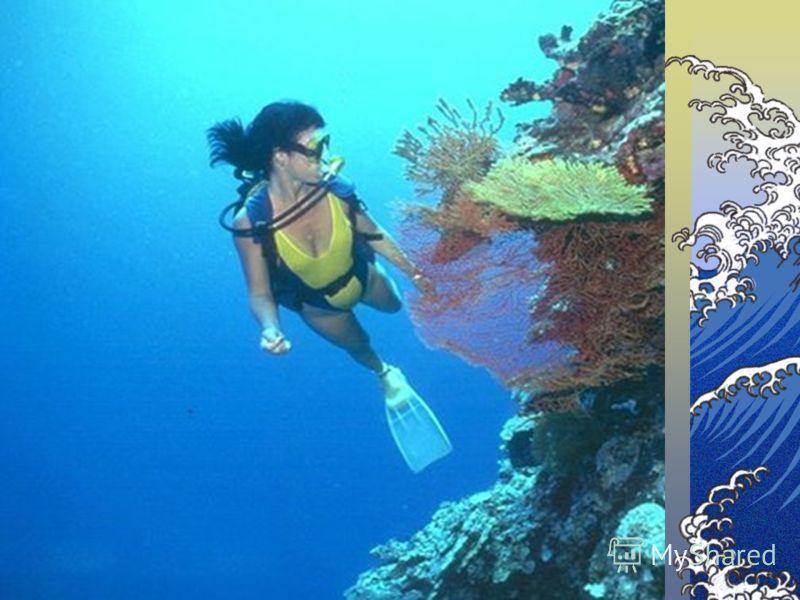Самая глубокая точка в океане (Марианская впадина)
