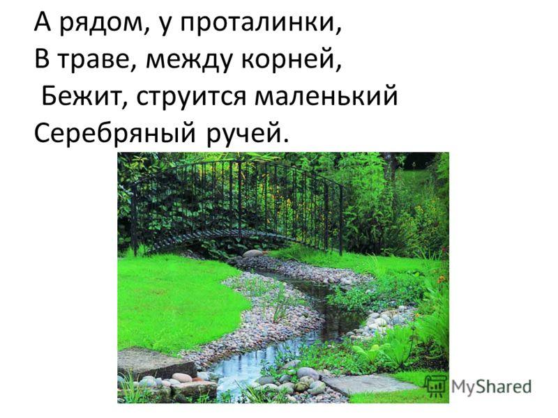 А рядом, у проталинки, В траве, между корней, Бежит, струится маленький Серебряный ручей.