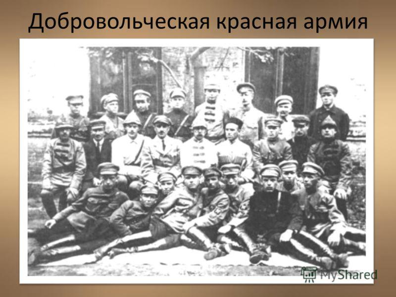 Добровольческая красная армия