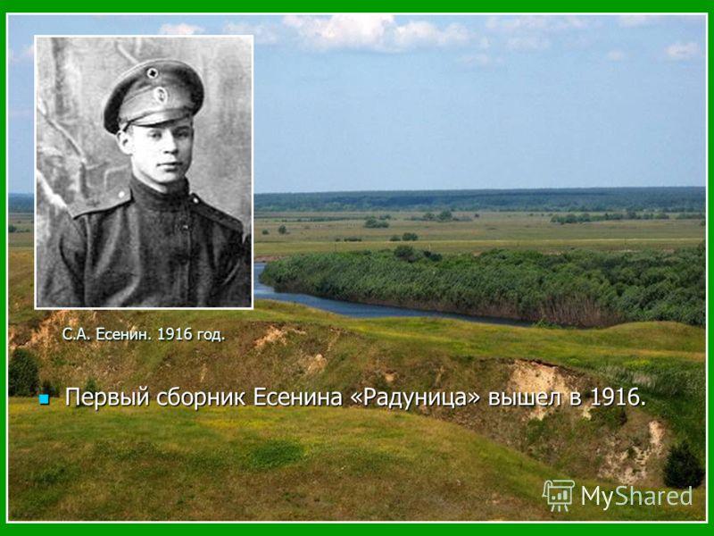 Первый сборник Есенина «Радуница» вышел в 1916. Первый сборник Есенина «Радуница» вышел в 1916. С.А. Есенин. 1916 год.