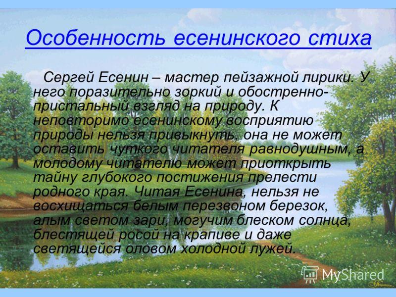 Особенность есенинского стиха Сергей Есенин – мастер пейзажной лирики. У него поразительно зоркий и обостренно- пристальный взгляд на природу. К неповторимо есенинскому восприятию природы нельзя привыкнуть, она не может оставить чуткого читателя равн