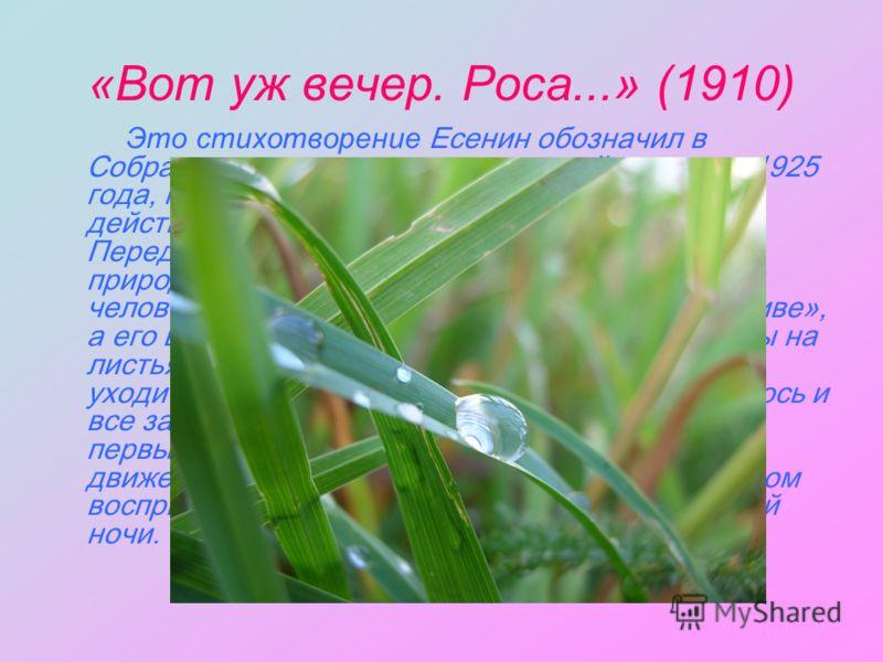 «Вот уж вечер. Роса...» (1910) Это стихотворение Есенин обозначил в Собрании, которое готовил во второй половине 1925 года, как «самое первое». На беглый взгляд оно действительно кажется простым и безыскусным. Перед нами знакомые приметы деревенской