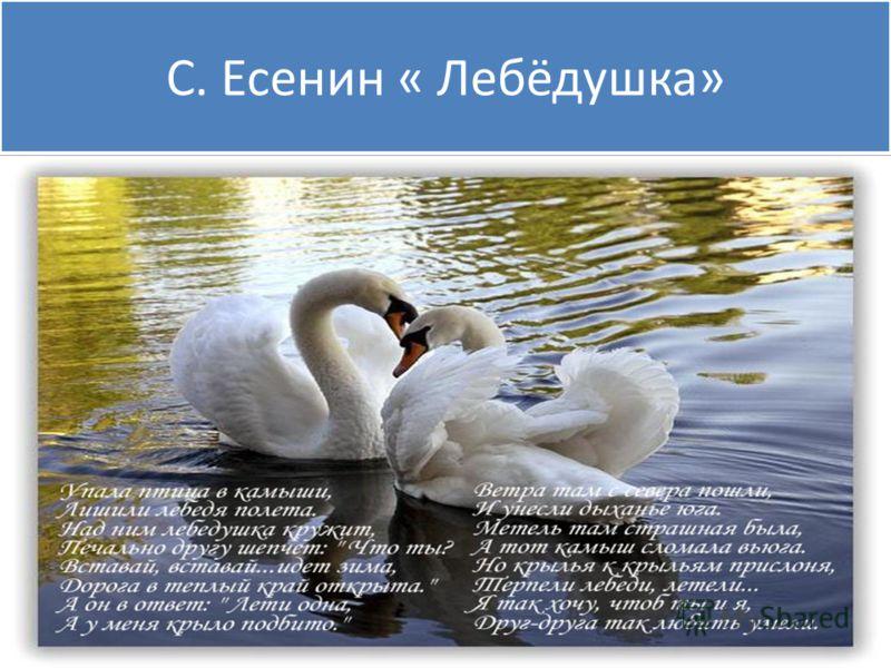 С. Есенин « Лебёдушка»
