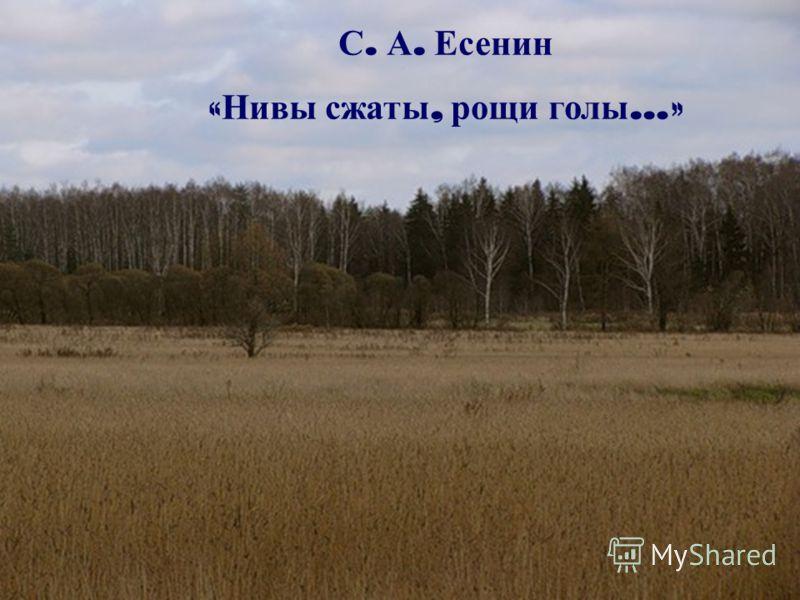 С. А. Есенин « Нивы сжаты, рощи голы …»